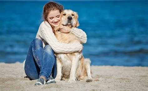 dogs don t like hugs new study says dogs don t like being hugged