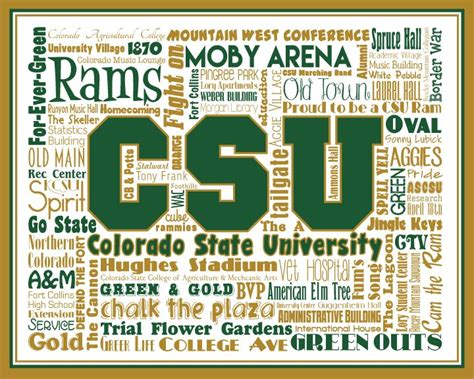 Colorado State Mba by 18 Best A Well Deserved Laugh Images On