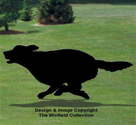 shadow golden retriever dogs running golden retriever shadow pattern