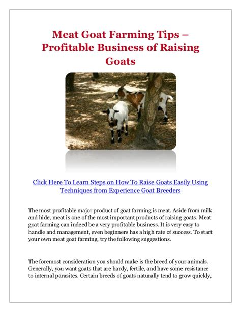 profitable business ideas how to prepare a solid business plan for home based business goat farming tips profitable business of raising goats