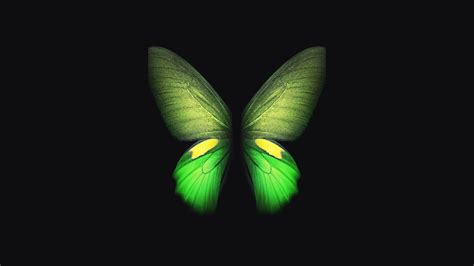 samsung galaxy fold green butterfly  wallpapers hd wallpapers id