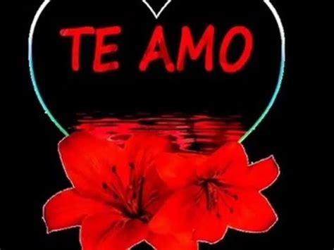 imagenes bellas de san valentin frases de amor con imagenes bonitas para dedicar san