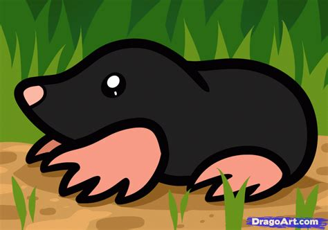 Kid Mol how to draw a mole for step by step animals for for free drawing