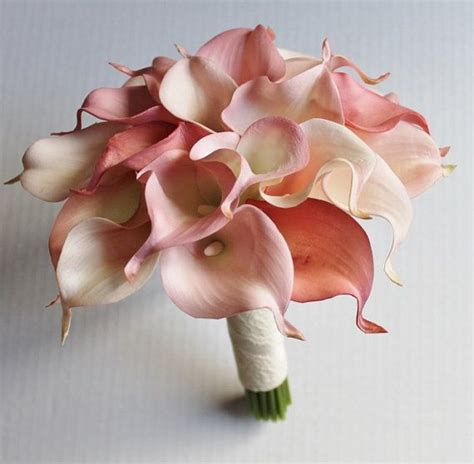 Wedding Bouquet Calla Lilies by Pink Calla Lilies Bouquet Www Imgkid The Image Kid