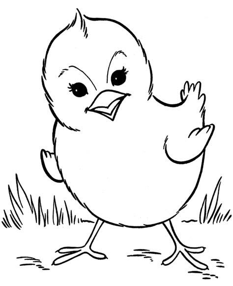 chicken coloring pages preschool coloring pages chick preschool coloring pages farm