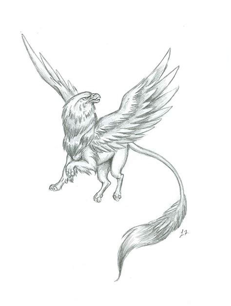 gryphon tattoo gryphon images gryphon drawings