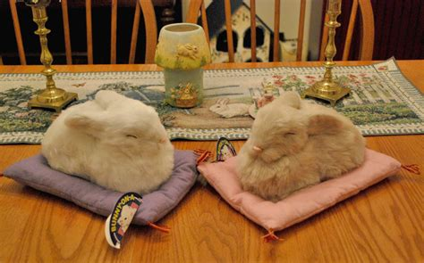 bunny home decor bunnyrabbit bunny pillow rabbit pillow bunnyrabbit pillow bunny rabbit gift items bunny