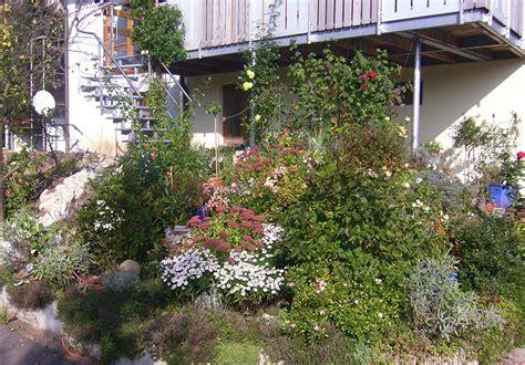 heimische pflanzen für den garten naturgarten anlegen stunning heimische pflanzen fr den