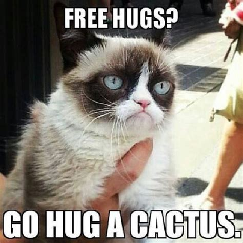 Cheezburger Meme - 10 of grumpy cat s best hilarious memes i can has