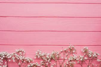 Beli 3 Gratis 1 Pink N Soft Pemerah Bibir Permanen pink flower vectors photos and psd files free