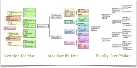 free printable family tree creator family tree chart maker genealogy chart creator family