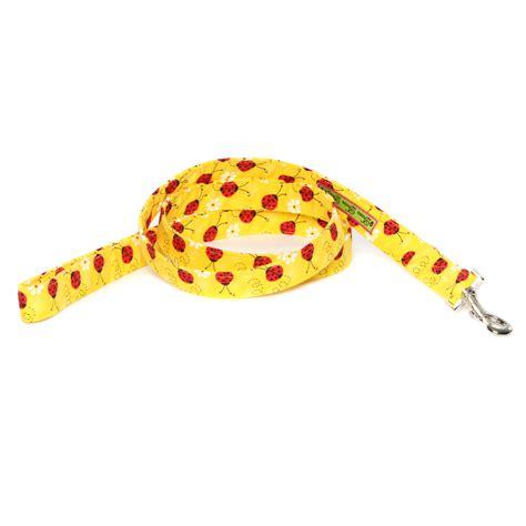 doodle bug doodle bug doodle bug leash tracheal prevention designer