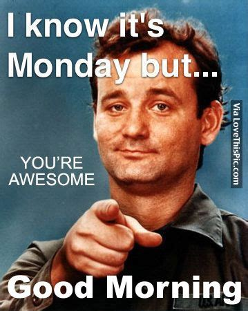 Monday Morning Meme - i know it s monday but good morning pictures photos