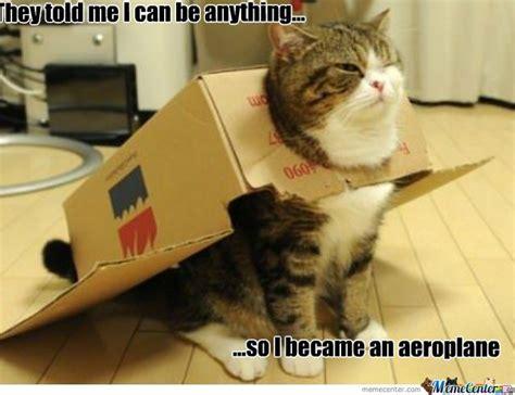 Flying Cat Meme - flying cat makes me smile pinterest