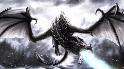 dark dragon wallpaper widescreen black dragon full hd wallpaper and hintergrund