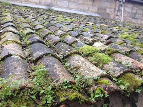 Mousse Sur Toiture Tuiles by Traiter Mur Ou Toiture Contre Le Lichen Les Algues La