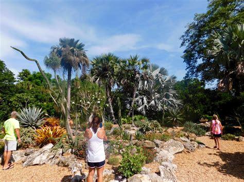 Botanical Garden Sarasota Selby Botanical Gardens Sarasota 7831 Le Courrier De Floride