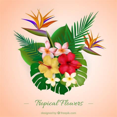 fiori realistici realistico variet 224 di fiori tropicali e foglie scaricare