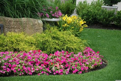 Flower Garden For Beginners Flower Gardening For Beginners Bee Home Plan Home Decoration Ideas
