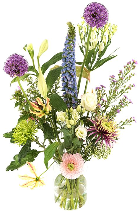 bloemen pastel bloemenzaak online nl geplukt tuin bloemen pastel bont