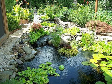 awesome backyard ponds  water garden landscaping
