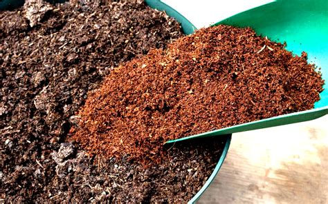 coco peat coco coir extraction processing and its use in gardening