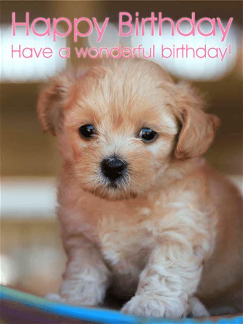 puppy s birthday puppy birthday card birthday greeting cards by davia