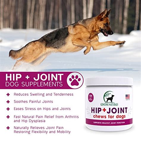 hip and joint supplements for dogs glucosamine chondroitin msm organic turmeric soft chews by genuine naturals hip and