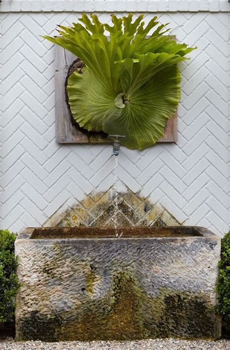 zen magazine s was designed by who 21 best outside images on pinterest landscaping