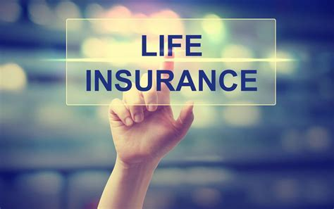 Top 20 Best Whole Life Insurance Companies   2019 Review Guide