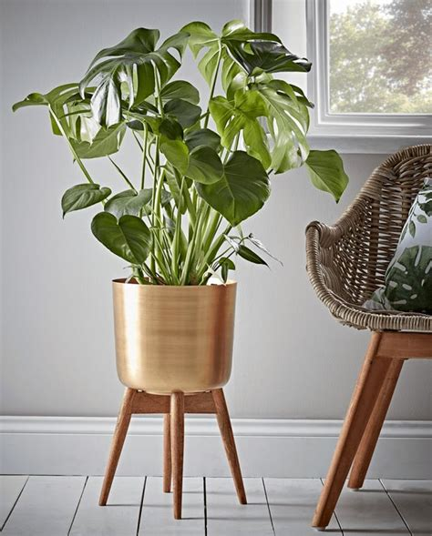 standing brass planter indoor plant pots indoor flower