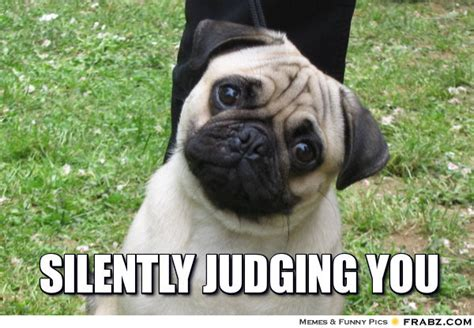 Judging Meme - silently judging you meme generator captionator