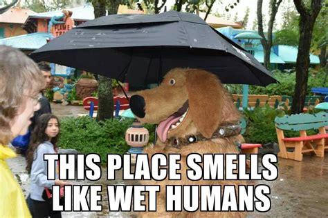 Disney World Memes - give me your best disney memes page 55 wdwmagic