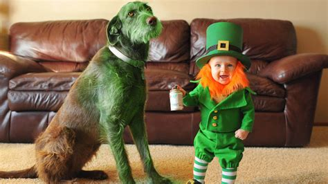 St Patrick S Day For Kids See Dad S Cute Leprechaun Day Real