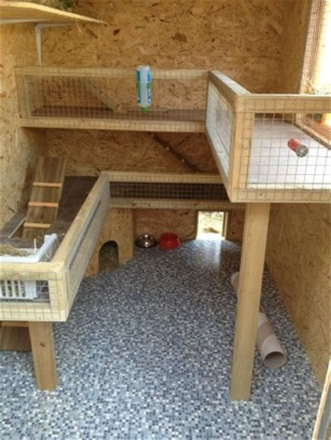 Guinea Pig Shed Ideas by 17 Best Ideas About Guinea Pig House On Hedgehog House Guinea Pigs And Guinea Pig Hutch