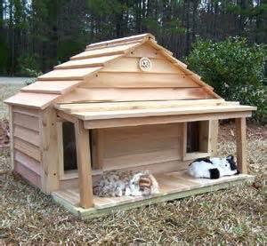 wood cat house
