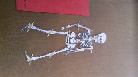 How To Make A Paper Skeleton - su s skeleton sticks stones chicken bones