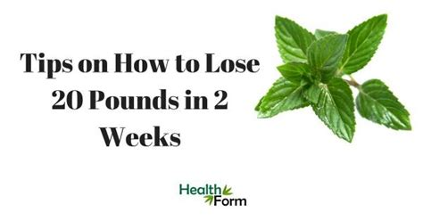 Lose 20 Pounds In 2 Weeks Detox Diet by How To Make Detox Water What It Is Its Benefits