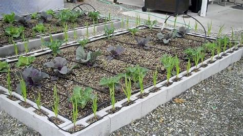 cinder block flower bed block raised bed garden designs pictures to pin on