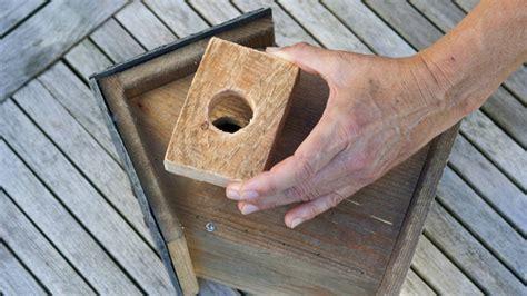 schubkästen selber bauen nistk 228 sten selbst bauen druckversion nistk sten