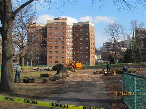 Tree Shop White Plains - financing for 1st building of the new winbrook in place