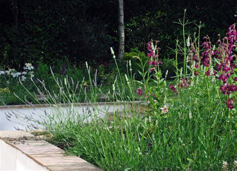 garden design oxshott lisa cox garden designs blog from the drawing board oxshott garden all finished lisa