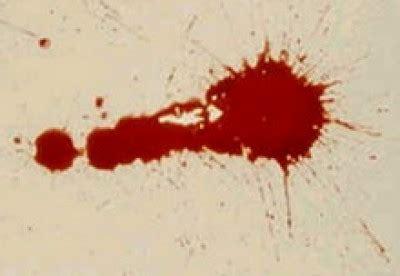 sangue nei sogni