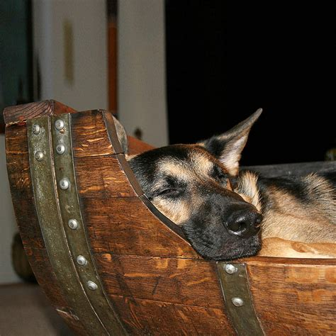 puppy wine reclaimed wine barrel bed the green