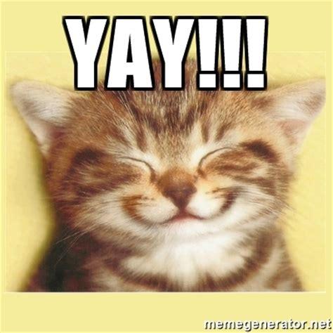 Yay Meme - yay very happy cat meme generator