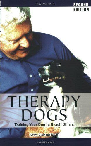 how to get your certified as a service 17 best ideas about therapy on therapy dogs service dogs and