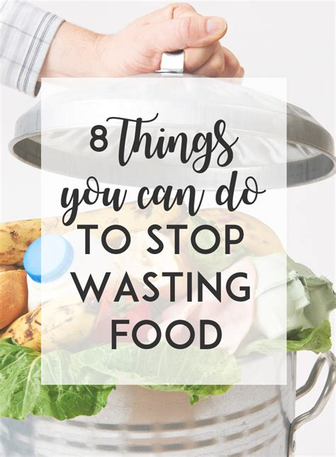 8 Things You Can Do To Prevent Animal Cruelty by 8 Things You Can Do To Stop Wasting Food The Tasty Bite