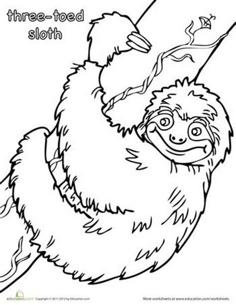sloth animal coloring pages 187 coloring pages three toed sloth coloring page coloring colors and sloths