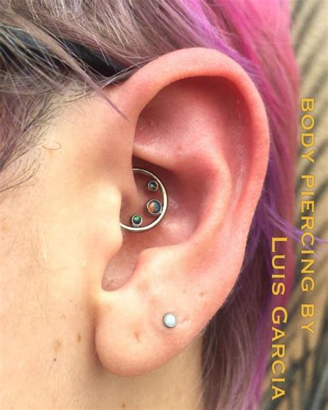 Set Piring My Melody S075085 129 best images about daith conch on