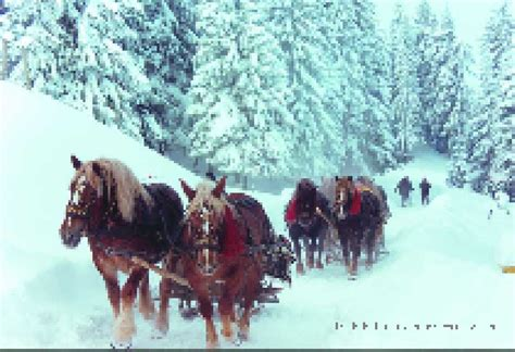 imagenes rumania navidad radio romania international feliz navidad